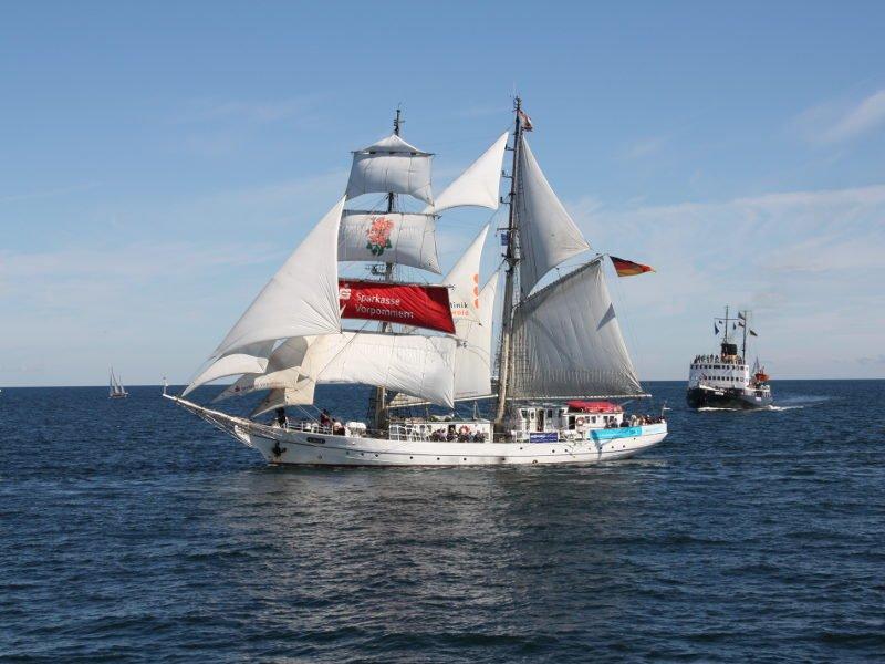 Das Flaggschiff der Hansestadt – die Greif