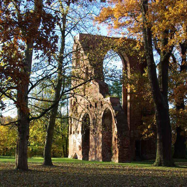 Klosterruine Eldena im Herbst